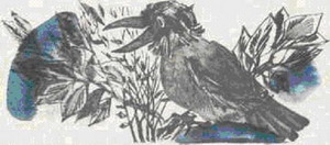 Сказочка про Воронушку - чёрную головушку и жёлтую птичку Канарейку - Алёнушкины сказки - Сказка Мамин-Сибиряк Д.Н. Рис. 1